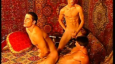 Arabian nobles enjoy banging this gay harem's biggest stallion