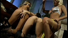 Hot and sultry lesbian fun with busty Brianna and her gal pals