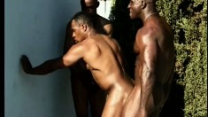 Black studs with massive cocks make each other moan outdoors