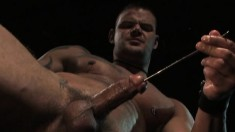 Ripped stud shows off his six-pack while stroking and sounding his stiff prick