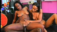 Naughty ebony grabs her fuckmate's balls while the other bitch is riding him