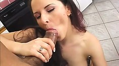 Big ass jade in black underwear gets her ass spread and pussy boarded