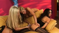 Hot Vanessa Lane sets up a lesbian threesome to fulfill her fantasies