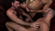 Hairy Stallion Is Joined By Two Attractive Studs For A Gay Threesome