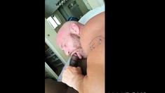 White Guy Sucking BBC